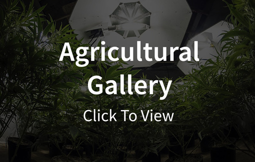 Agricultural Gallery